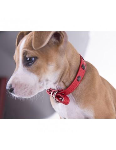 DG01 Deri Köpek Tasması