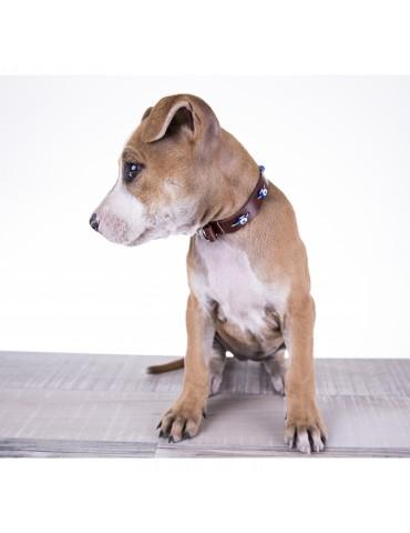 DG03 Deri Köpek Tasması