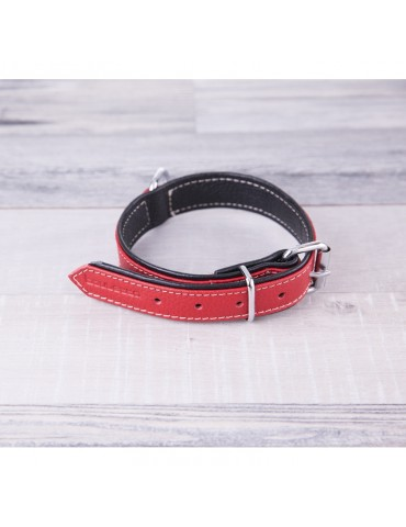 DG11 Leather Dog Collar